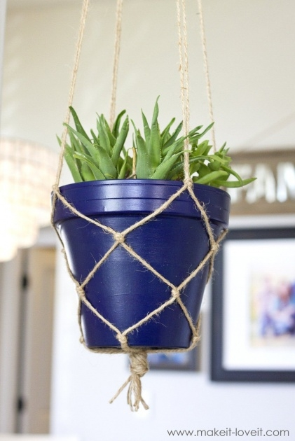 Ideas for Rope Plant Hanger Photo