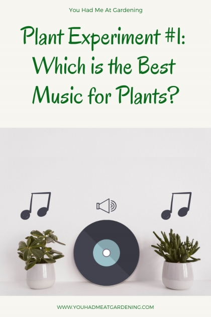 Innovative Music And Plants Science Fair Project Results Picture