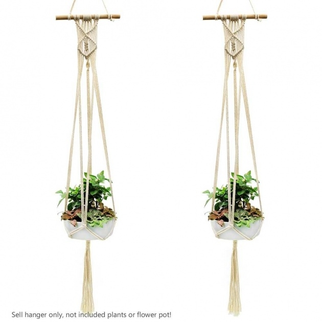 Innovative Rope Plant Hanger Picture