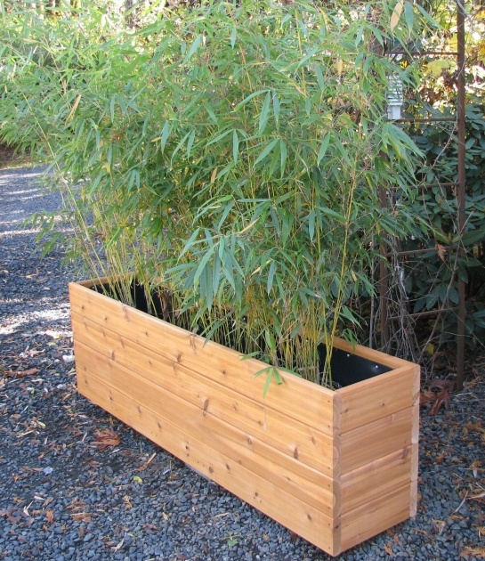 Insanely Bamboo Planter Ideas Picture