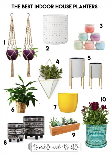 Insanely Planters For Indoor Plants Photo