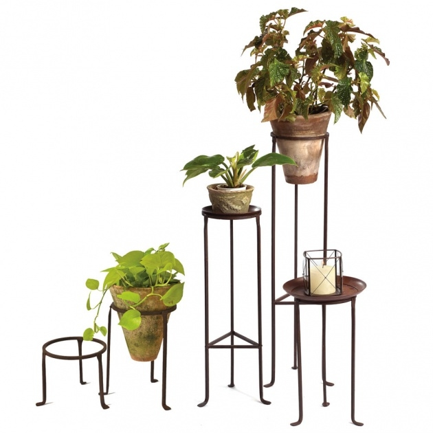 Insanely Wrought Iron Plant Stands Outdoor Photo