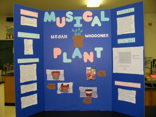 Inspiration Music And Plants Science Fair Project Results Image