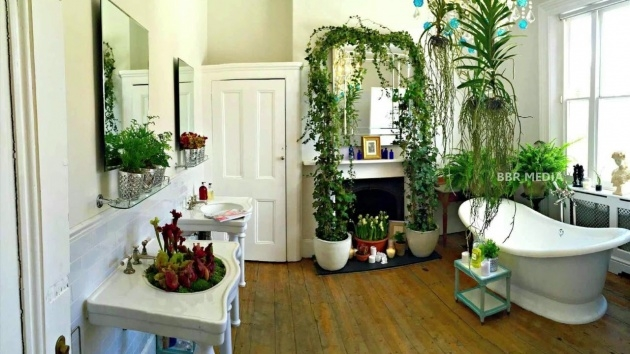 Inspiration Plants For Small Spaces Photo