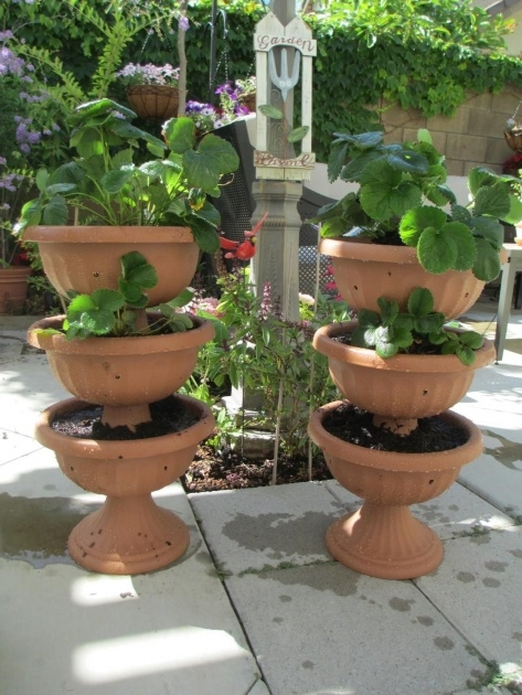 Inspirational 3 Tier Strawberry Planter Picture