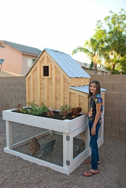 Inspirational Chicken Coop With Planter Image