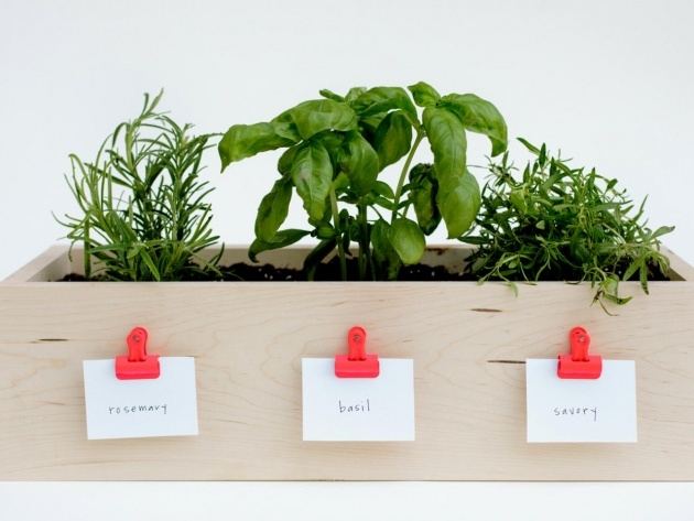Inspirational Herb Planter Box Picture