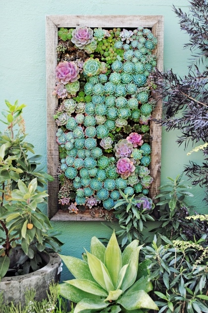 Inspirational Outdoor Living Wall Planters Photo