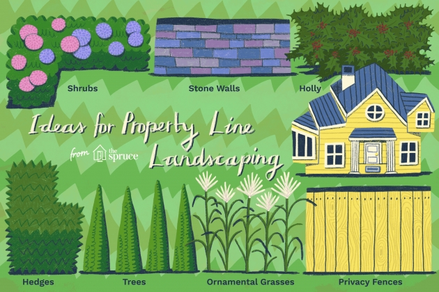 Inspirational Plant Fence Ideas Picture