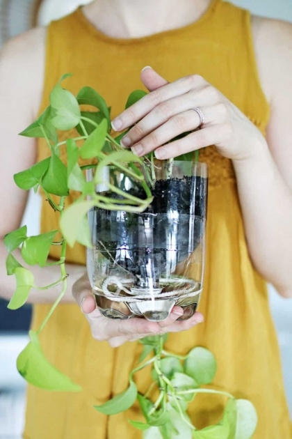 Inspirational Self Watering Planters Diy Picture