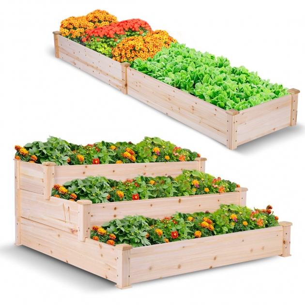 Inspirational Vegetable Planter Picture