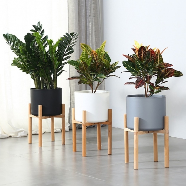 Inspiring Indoor Plants And Pots Picture