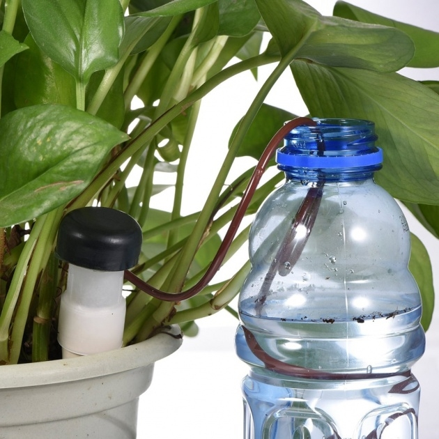 Inspiring Plant Watering System Picture