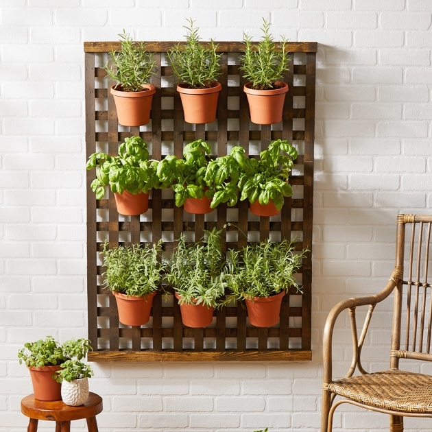 Inspiring Small Lattice For Potted Plants Image
