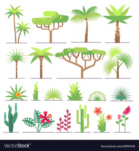 Inspiring Tropical Types Of Plants Photo