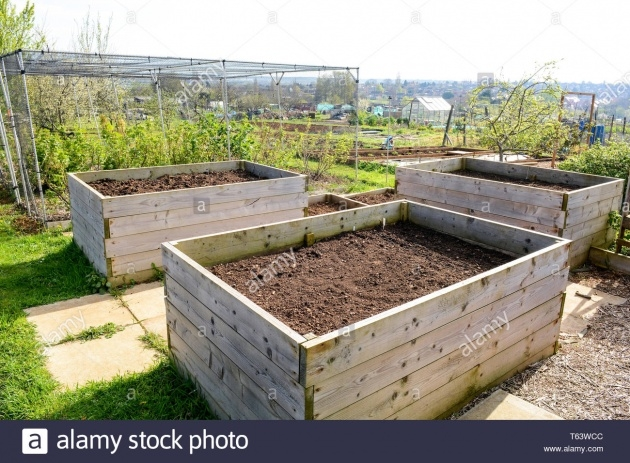 Marvelous Planter Boxes For Growing Vegetables Image
