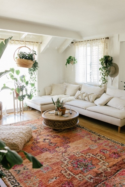 Marvelous Tall Indoor House Plants Trees Photo