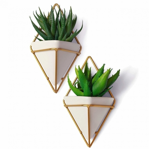 Most Creative Decorative Wall Planters Picture