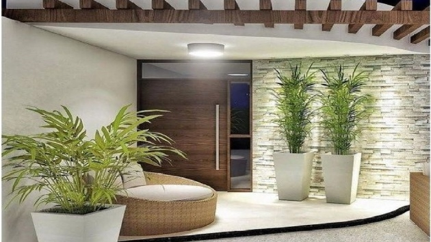 Most Creative Modern Indoor House Plants Image