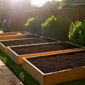 Planter Boxes For Growing Vegetables