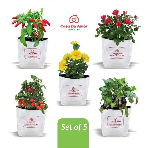 Most Creative Poly Planter Bags Image
