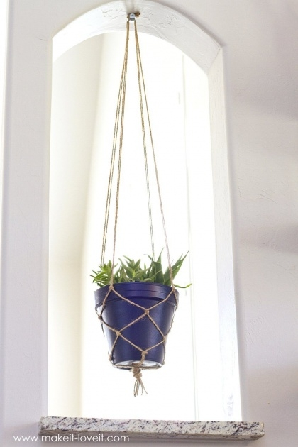 Most Creative Rope Plant Hanger Photo