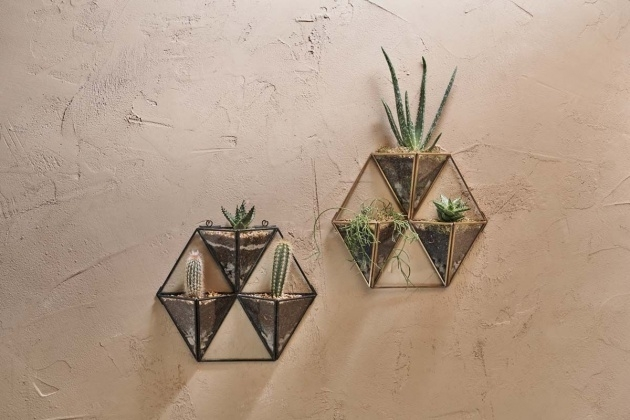 Most Creative Wall Hung Planters Photo