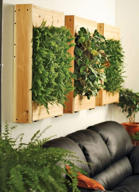 Most Creative Wall Mounted Planters Indoor Image