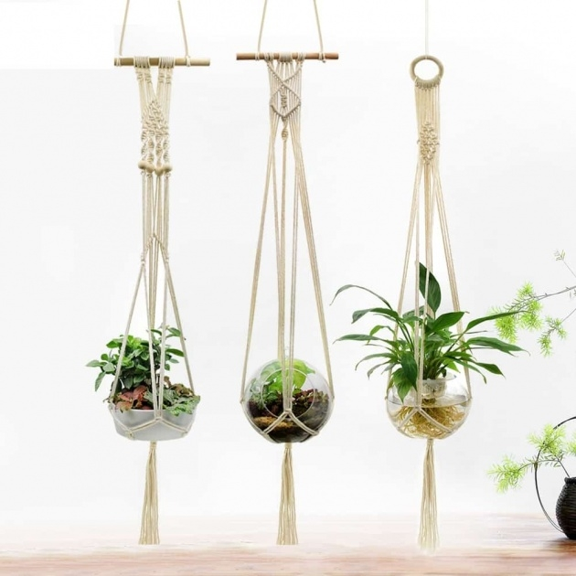 Most Creative Wall Planters Indoor Photo
