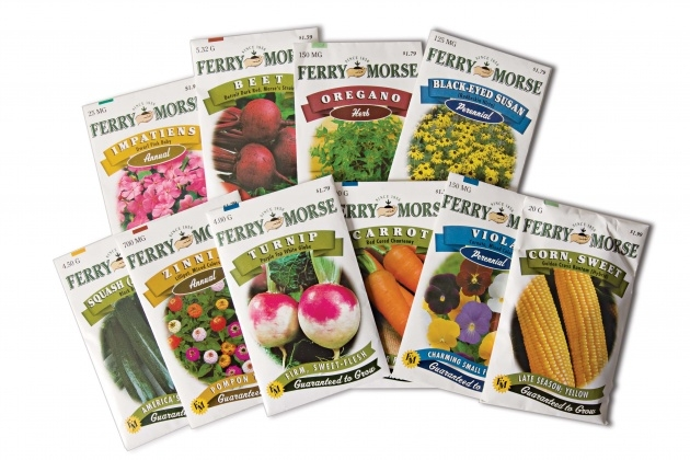 Most Perfect Ferry Morse Seed Catalog Picture