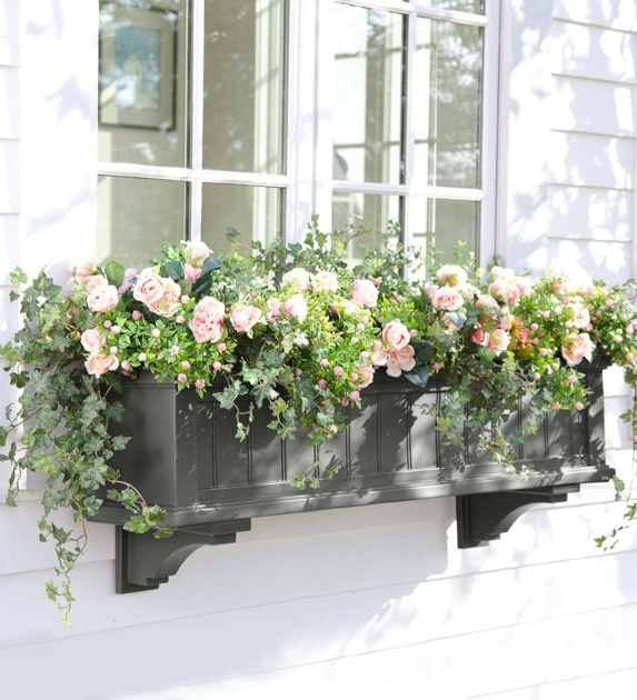 Most Perfect Hanging Window Planter Photo
