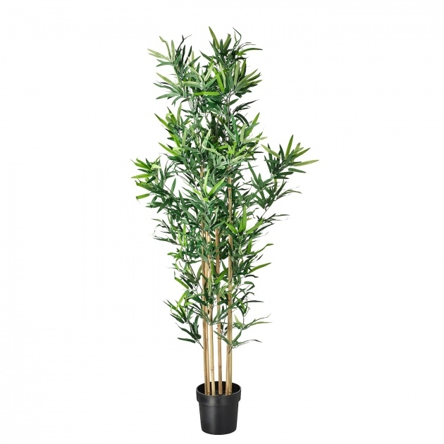 Most Perfect Ikea Artificial Plants Image