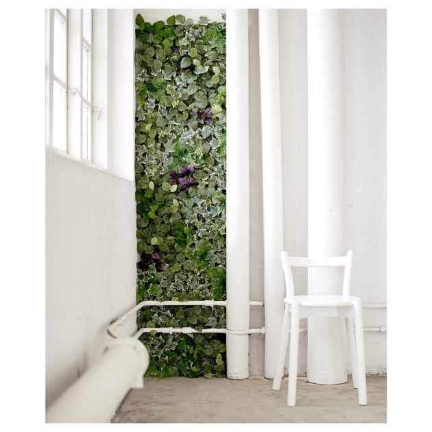 Most Perfect Ikea Plant Wall Photo