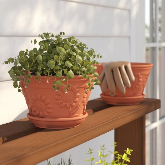 Most Perfect Terracotta Planters Photo