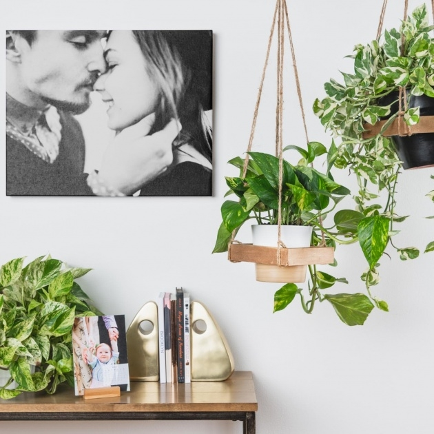 Most Popular Make Hanging Planter Picture