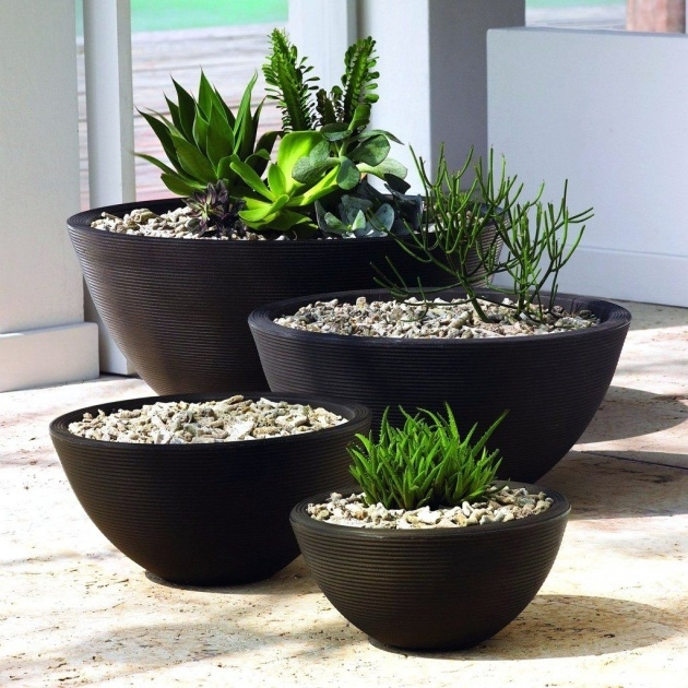 Most Popular Outside Planters Photo