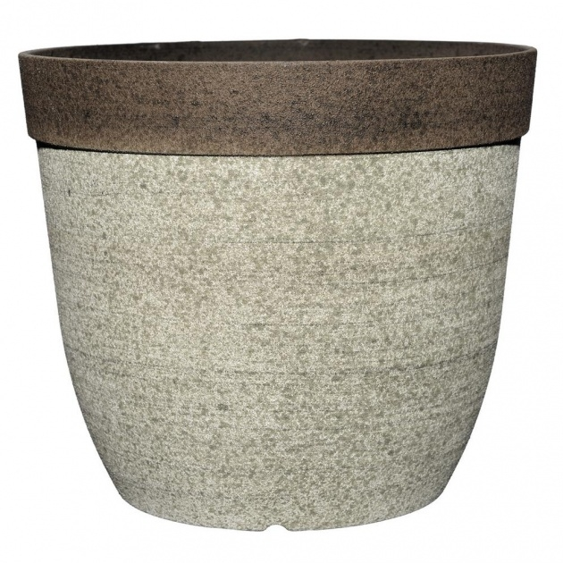 Most Popular Planters For Indoor Plants Image