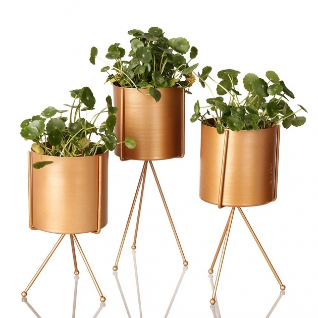 Most Popular Stainless Steel Plant Pots Photo