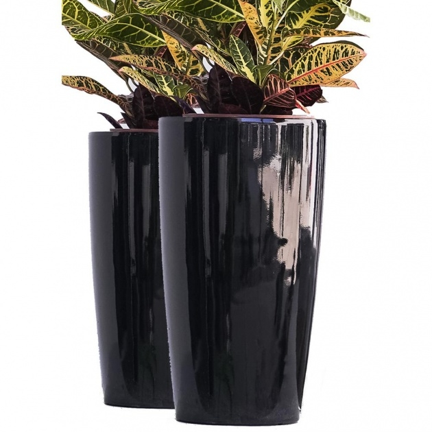 Outstanding Tall Black Planter Picture