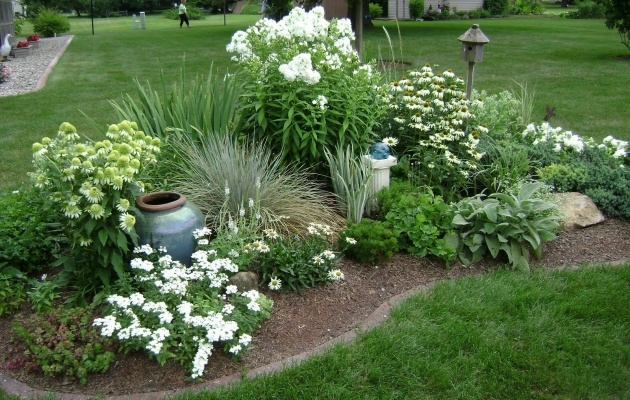 Perfect Flower Bed Plants Image