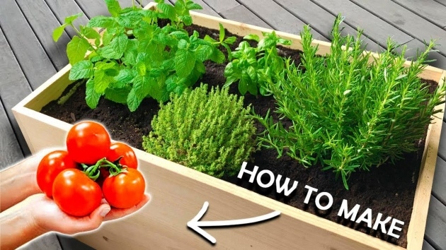 Perfect Planter Boxes For Growing Vegetables Photo
