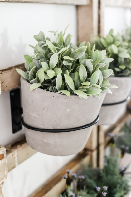 Perfect Wall Planter Hook Picture