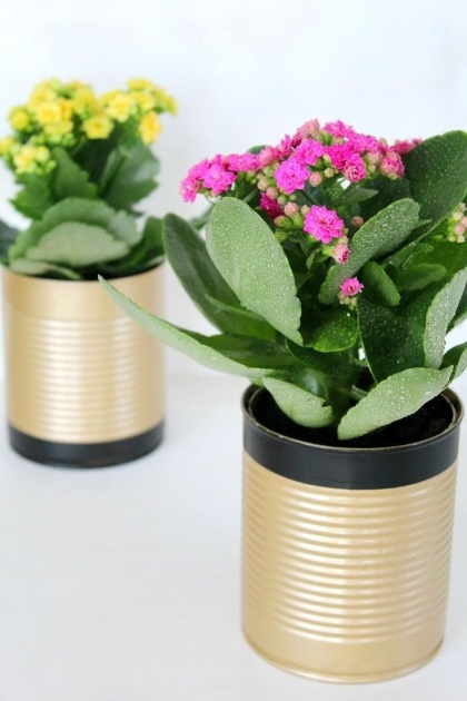 Popular How To Make Plant Pots Photo