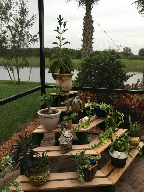 Popular Outdoor Plant Stand Photo