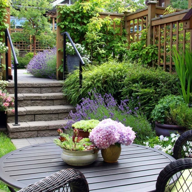 Popular Plants For Small Spaces Picture