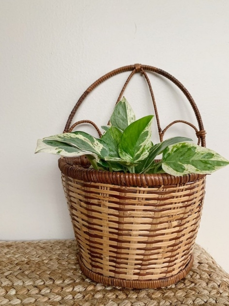 Popular Wall Baskets For Plants Image