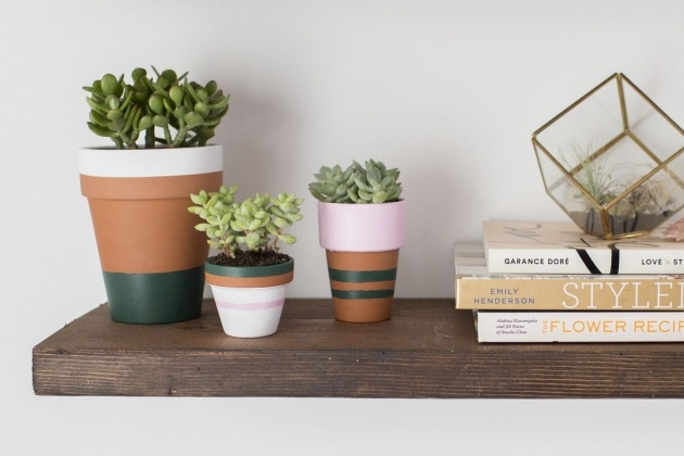 Simple Homemade Plant Pots Picture
