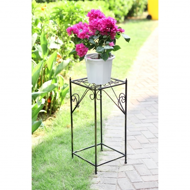 Simple Iron Plant Stand Image
