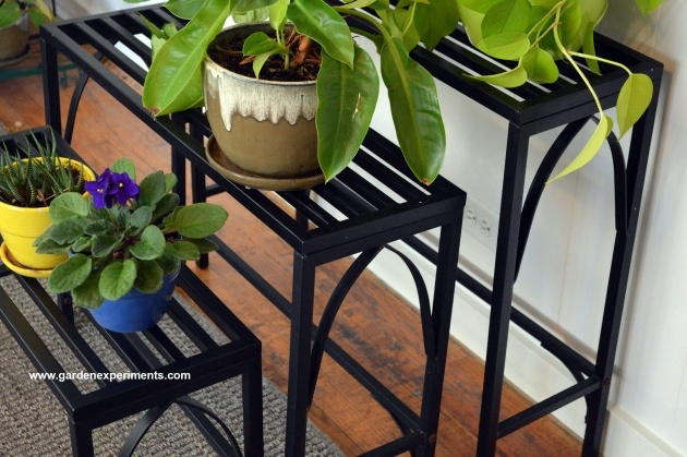 Simple Outdoor Plant Table Photo