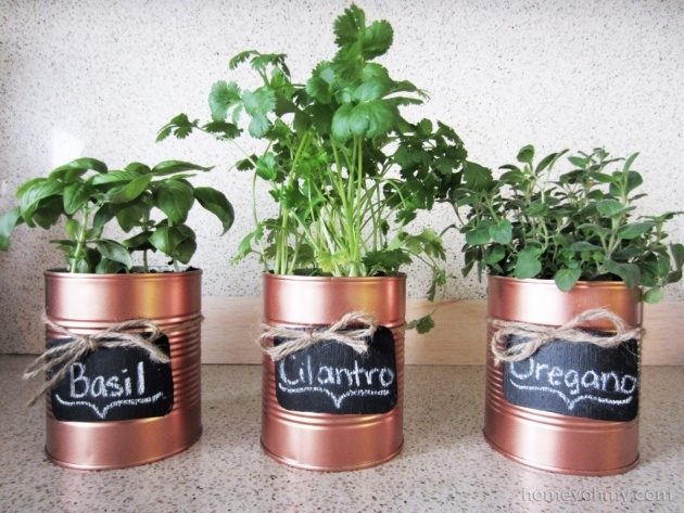 Simple Tin Can Planters Photo